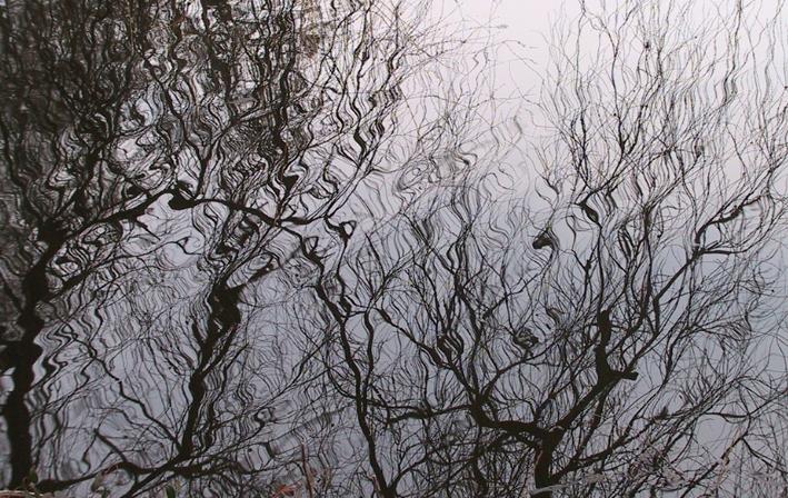 spejling i vand